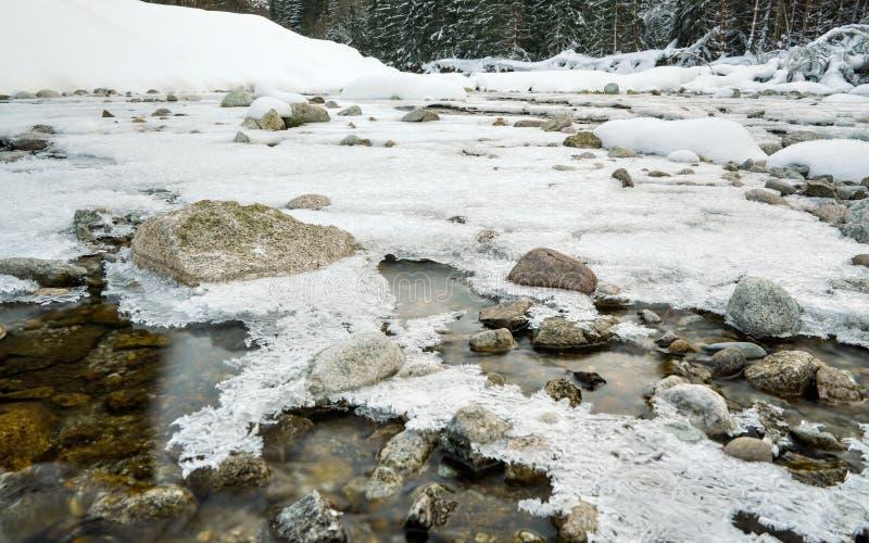 Rivière peu profonde de forêt couverte de couche en cristal de neige et de glace en hiver, corrections blanches au-dessus des p image stock