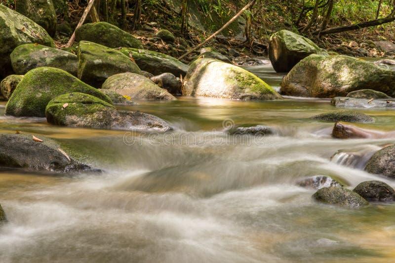 Rivière profondément dans la forêt tropicale de montagne photographie stock