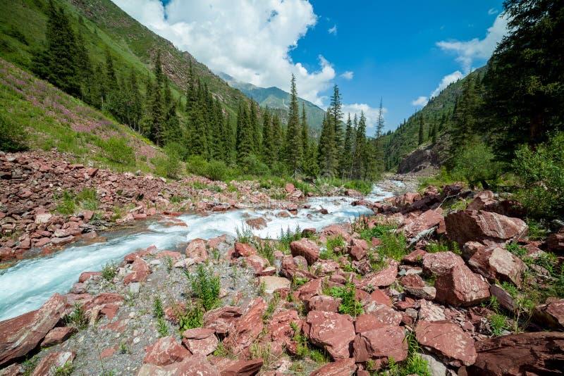Rivière rapide Kegety, Tien Shan, Kirghizistan photos stock