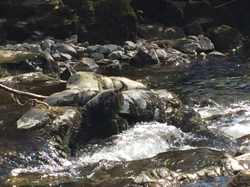 Rivière rocheuse image libre de droits