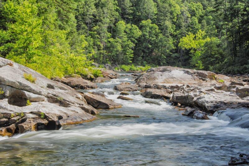 Rivière sauvage et scénique de Chattooga, GA/SC images libres de droits