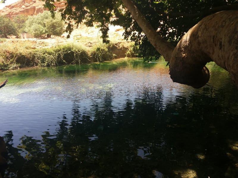 Rivière tranquille photo libre de droits