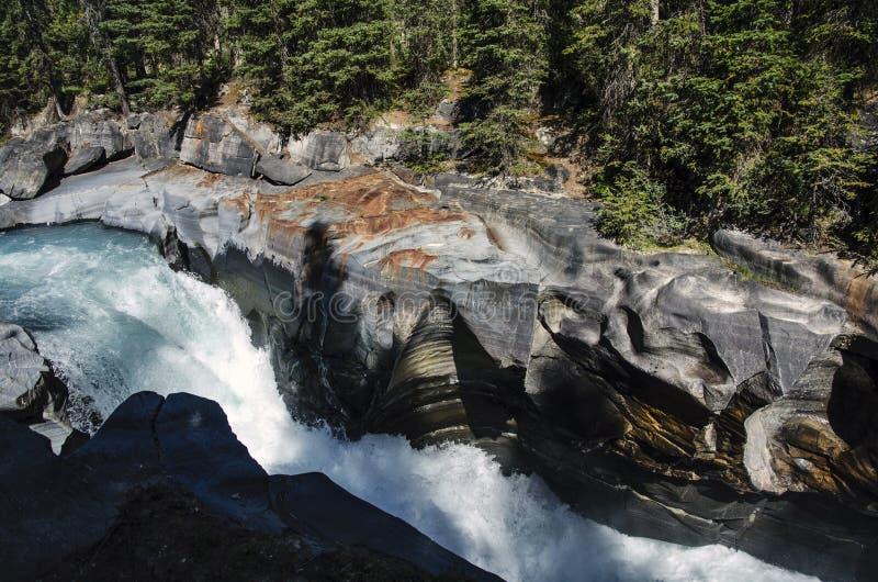 Rivière traversant le canyon photos libres de droits