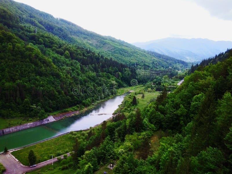 Rivière traversant les bois photographie stock libre de droits