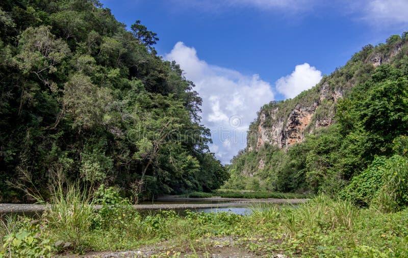 Rivière Yumuri Baracoa Cuba images libres de droits
