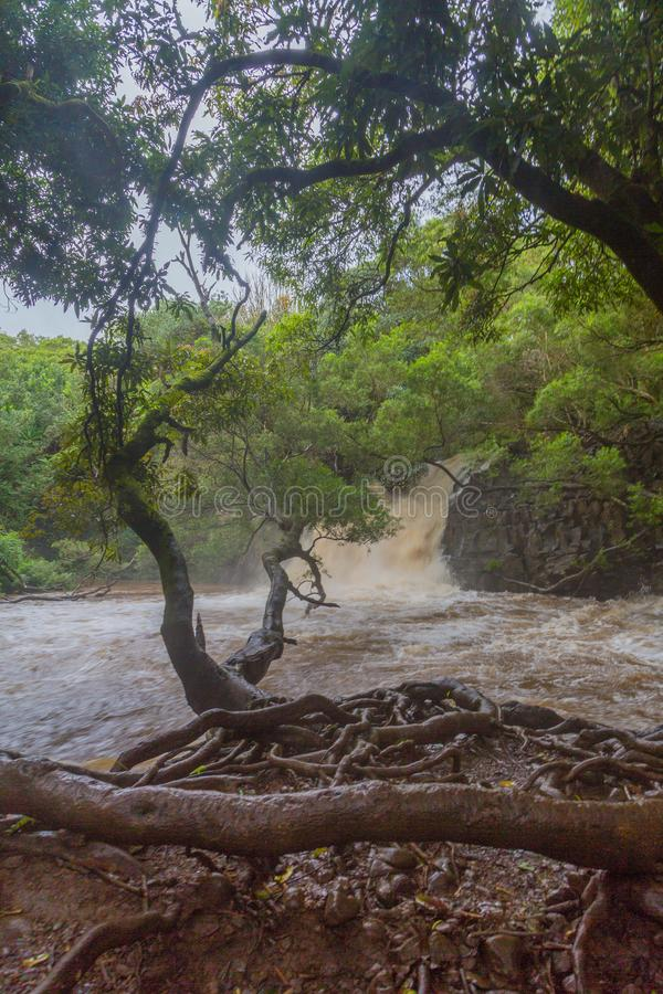 Rivières gonflées et eaux de jaillissement sur Maui image libre de droits