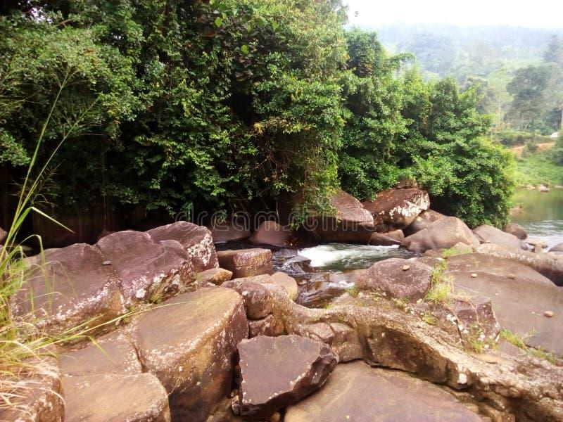 Rivières sri-lankaises images stock