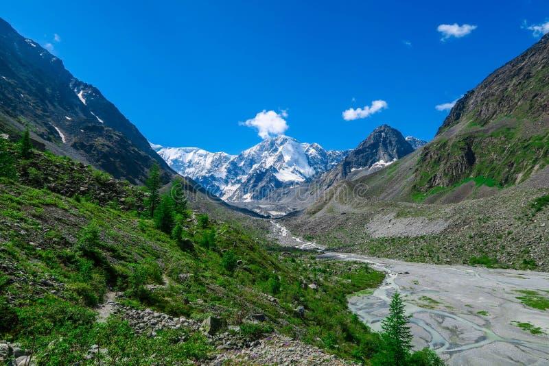 Rivi?re de glacier d'Akkem et Mountain View ?t? en montagnes d'Altai image libre de droits