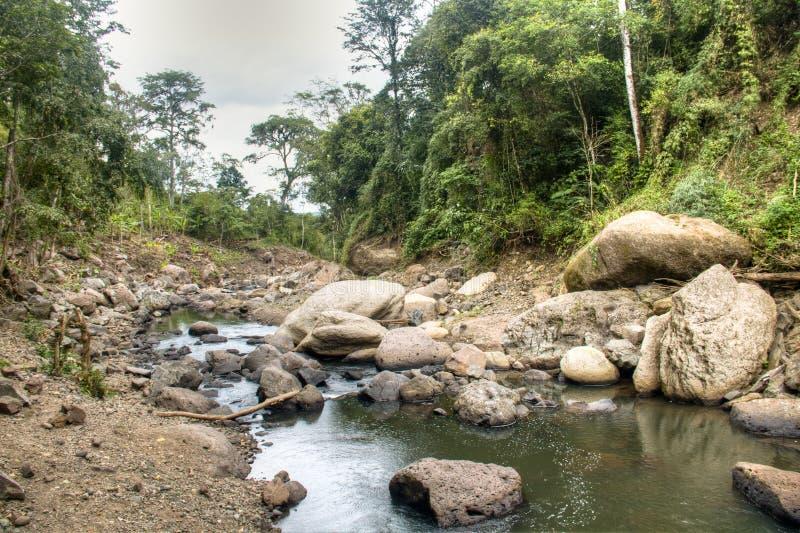 Rivier bij de Cascada-Blanca waterval dichtbij Matagalpa, Nicaragua stock foto's