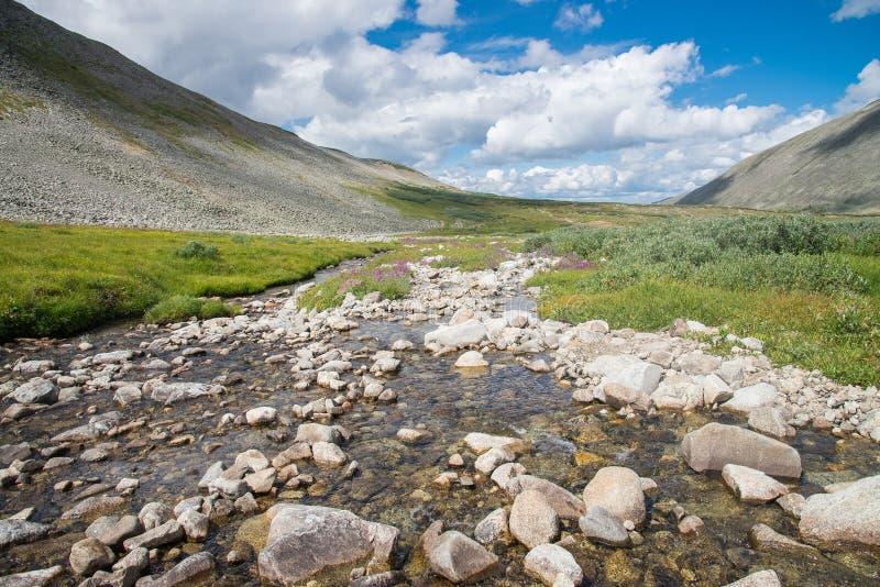 Rivier in de blauwe bewolkte hemel van de bergvallei bij achtergrond Natuurlijk de zomerlandschap, Rusland, Oostelijke Sayan-berg stock fotografie