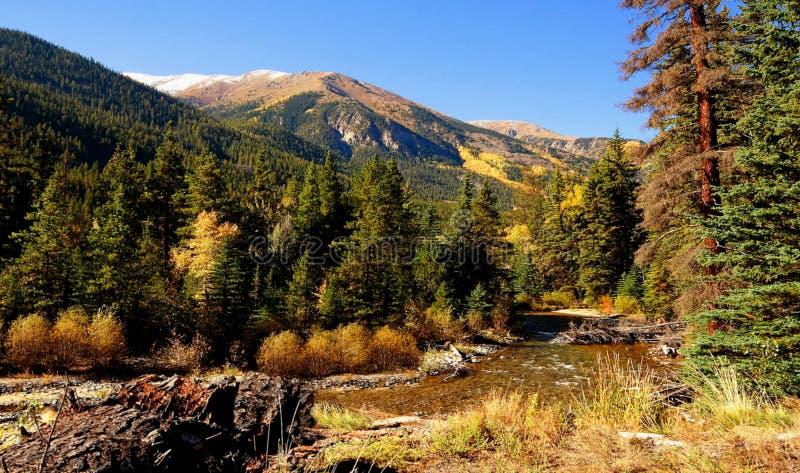Rivier in de Colorado Rockies royalty-vrije stock foto's
