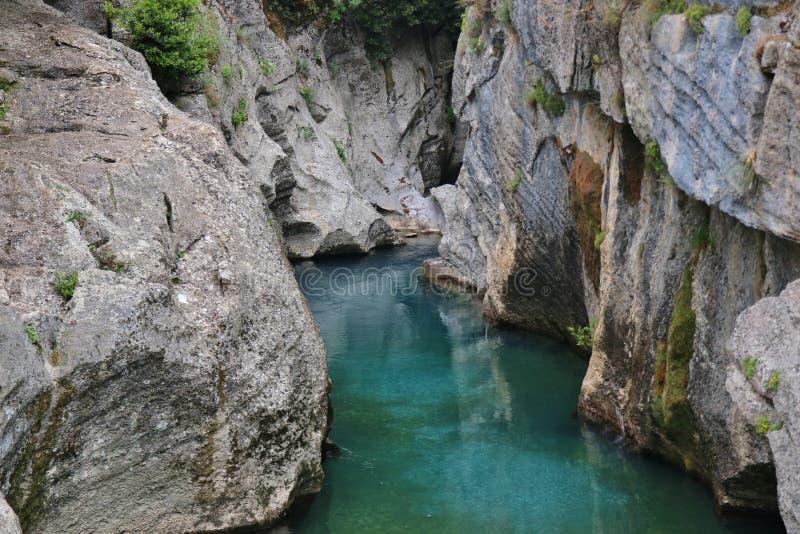 rivier in de groene canion royalty-vrije stock afbeeldingen