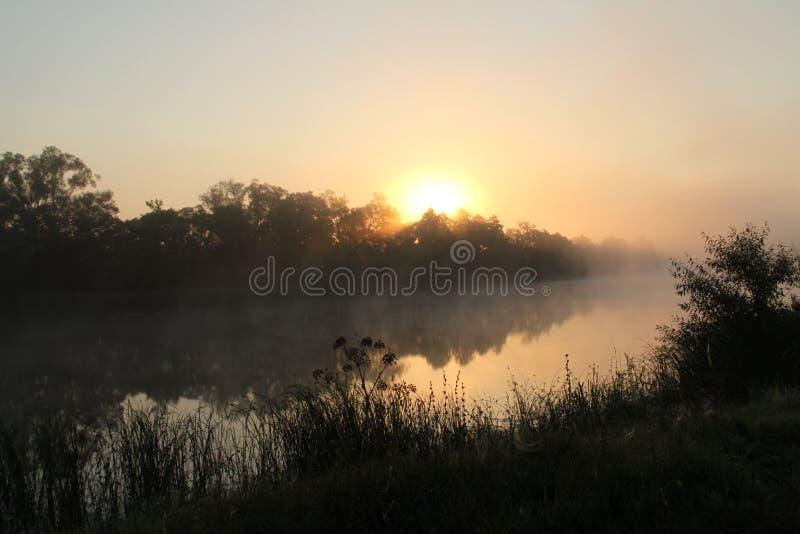 Rivier in de mist royalty-vrije stock foto
