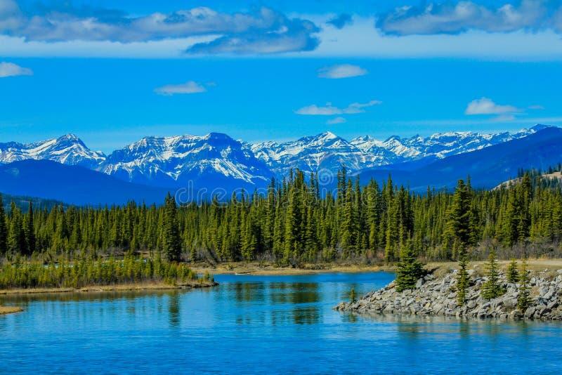 Rivier de Noord- van Saskatchewan, aylmer Provinciaal Recreatiegebied, Alberta, Canada royalty-vrije stock foto's