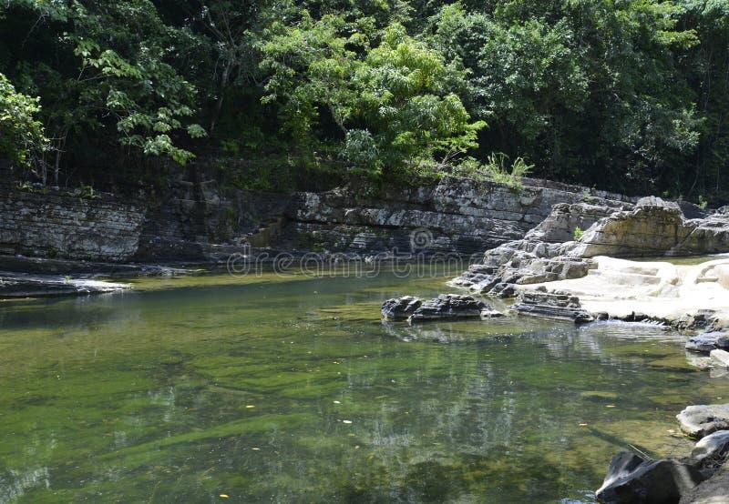 Rivier in de wildernis van de Dominicaanse Republiek stock fotografie