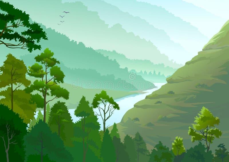 Rivier die door het Bos van Amazonië vloeit royalty-vrije illustratie