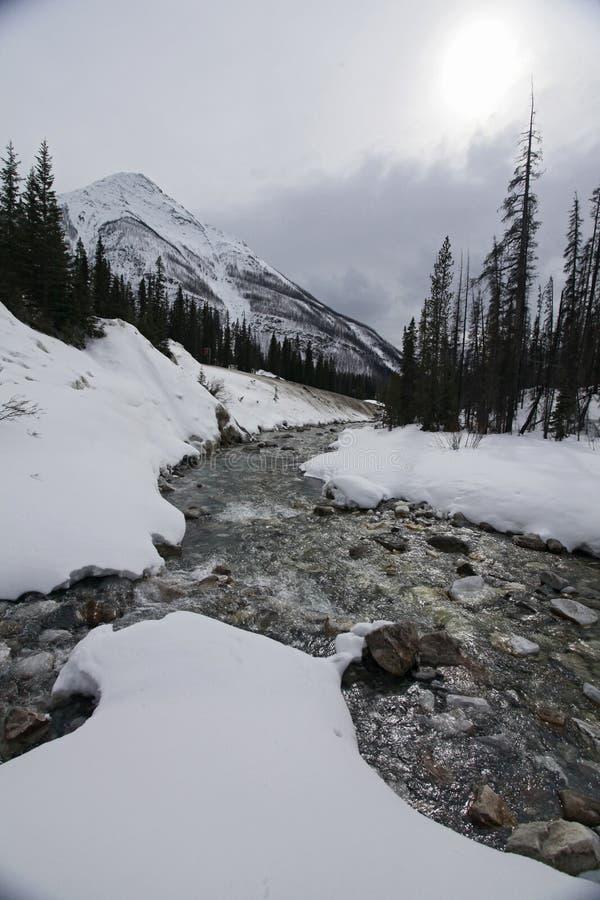 Rivier die in sneeuw en ijs glinstert stock foto
