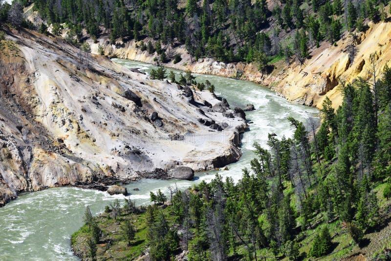 Rivier die van het Yellowstone de Nationale Park Canion doornemen royalty-vrije stock afbeeldingen