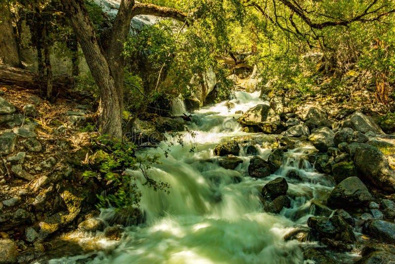 Rivier die van het Yosemite de Nationale Park stroomafwaarts stromen stock foto's