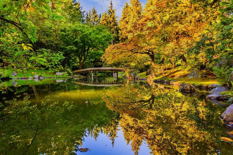 Rivier in een park met een spiegelbeeld van de hemel, de bomen en de struiken royalty-vrije stock fotografie