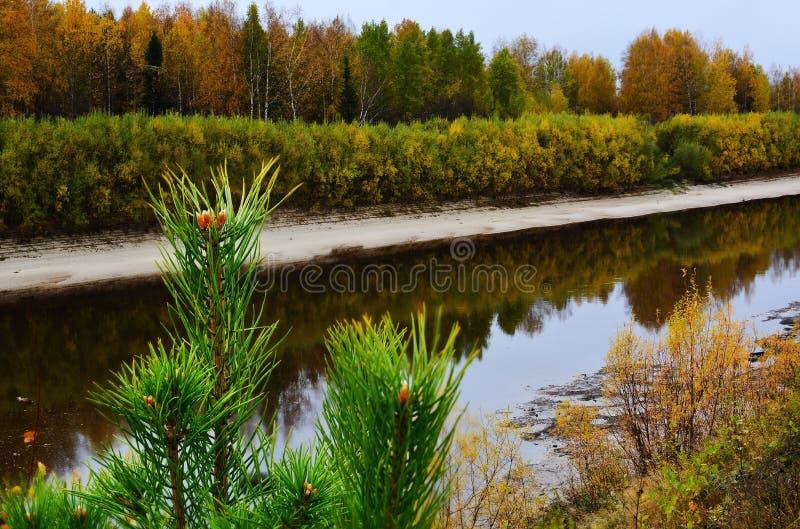 Rivier en bomen in de herfst De weerspiegelde Herfst royalty-vrije stock fotografie