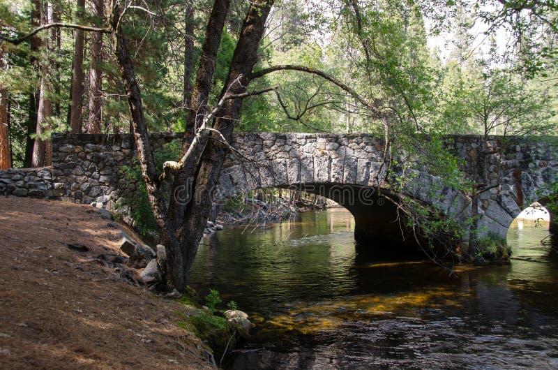 Rivier in het Nationale Park van Yosemite stock afbeeldingen