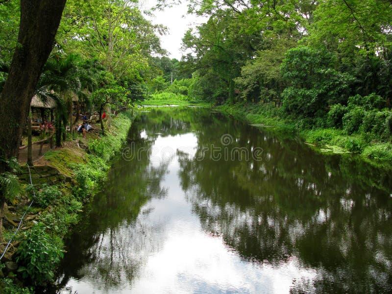 Rivier, La Mesa Ecopark, Quezon-Stad, Filippijnen royalty-vrije stock afbeeldingen