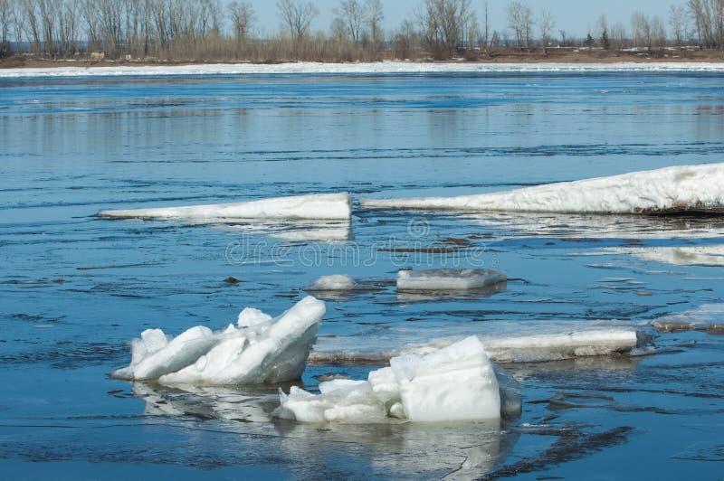 Rivier met gebroken ijs ijsheuveltjes op de rivier in de lente royalty-vrije stock foto