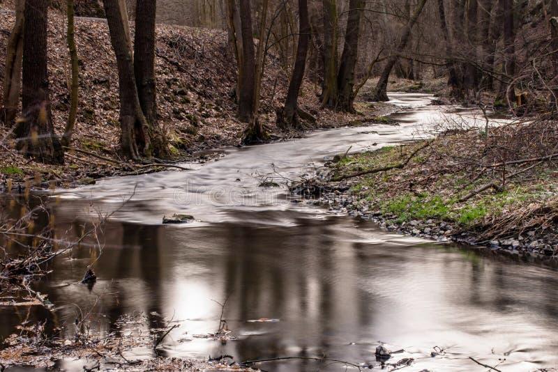 Rivier met onscherp water in bos royalty-vrije stock fotografie