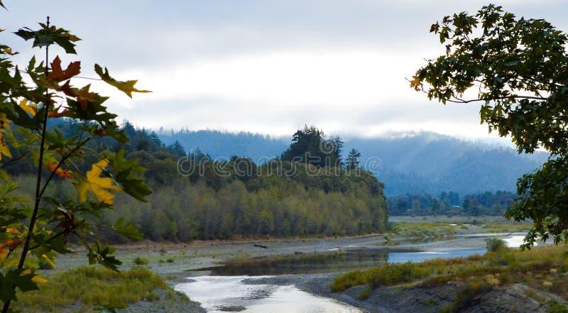 Rivier in Noordelijk Californië stock foto's