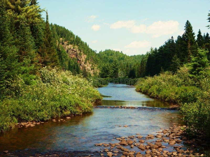 Rivier in Noordelijk Ontario, Canada royalty-vrije stock foto