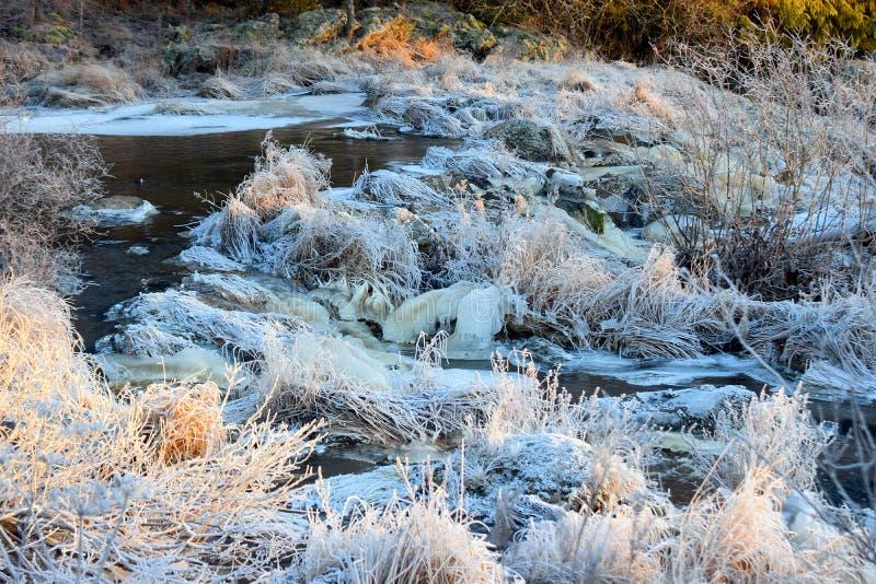Rivier op de winter stock afbeeldingen