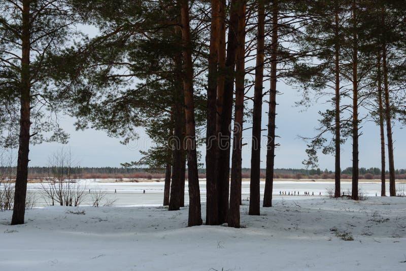 Rivier overgang in de winter stock afbeelding