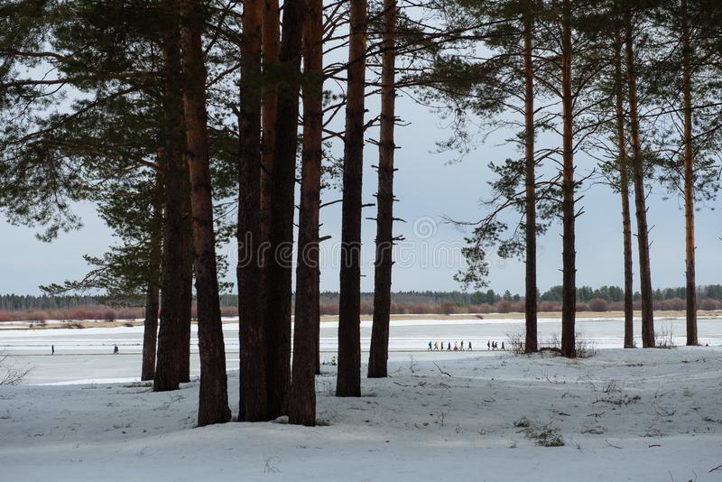 Rivier overgang in de winter royalty-vrije stock foto