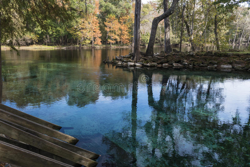 Rivier Santa Fe, Nationaal Park, Florida stock afbeelding
