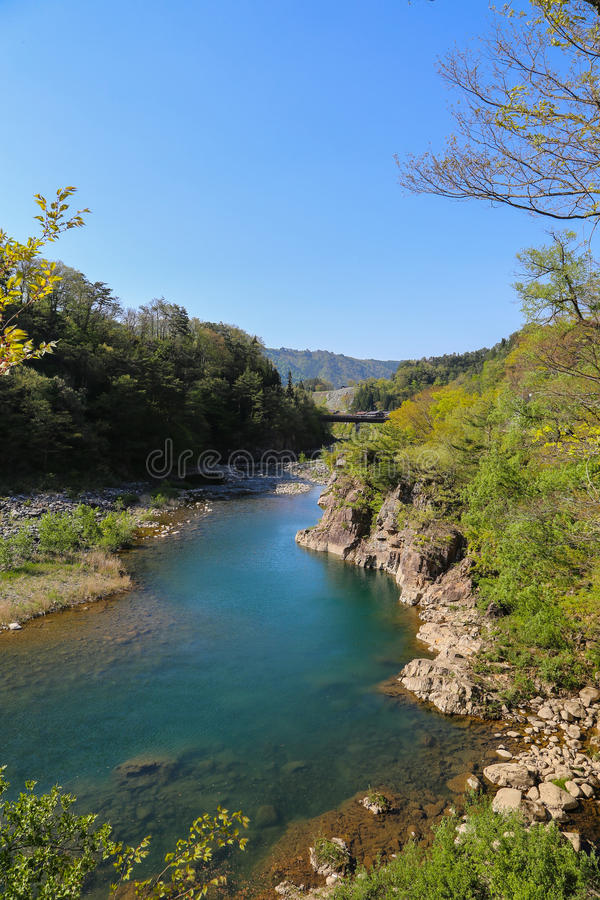 Rivier in shirakawago stock afbeelding