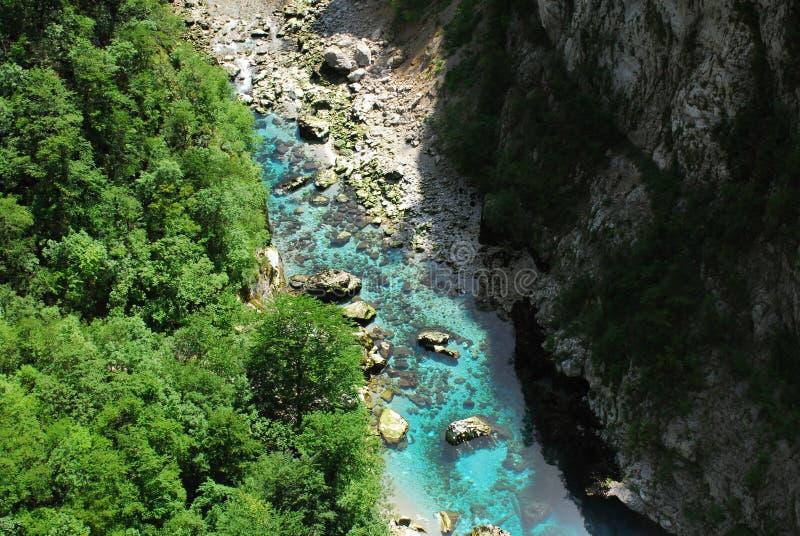 Rivier Tara in Monte Negro royalty-vrije stock afbeeldingen