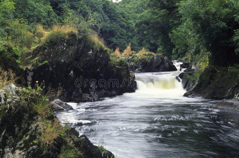Rivier Teifi, Llandysul royalty-vrije stock fotografie