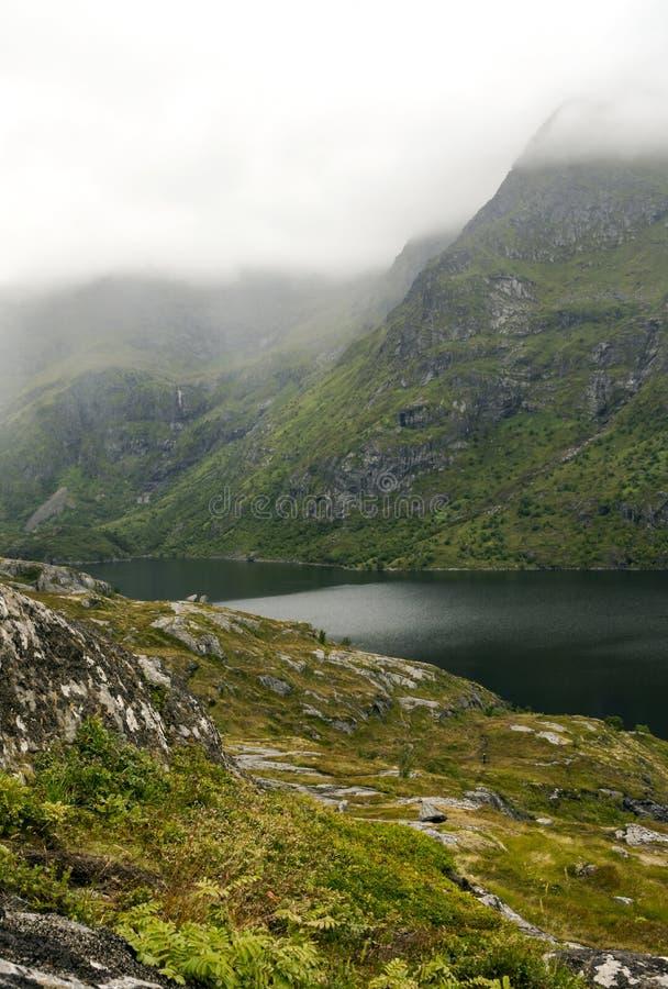 Rivier tussen de bergen stock afbeeldingen