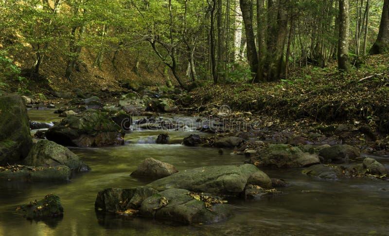 Rivier van Dromen, Kroatië royalty-vrije stock afbeeldingen