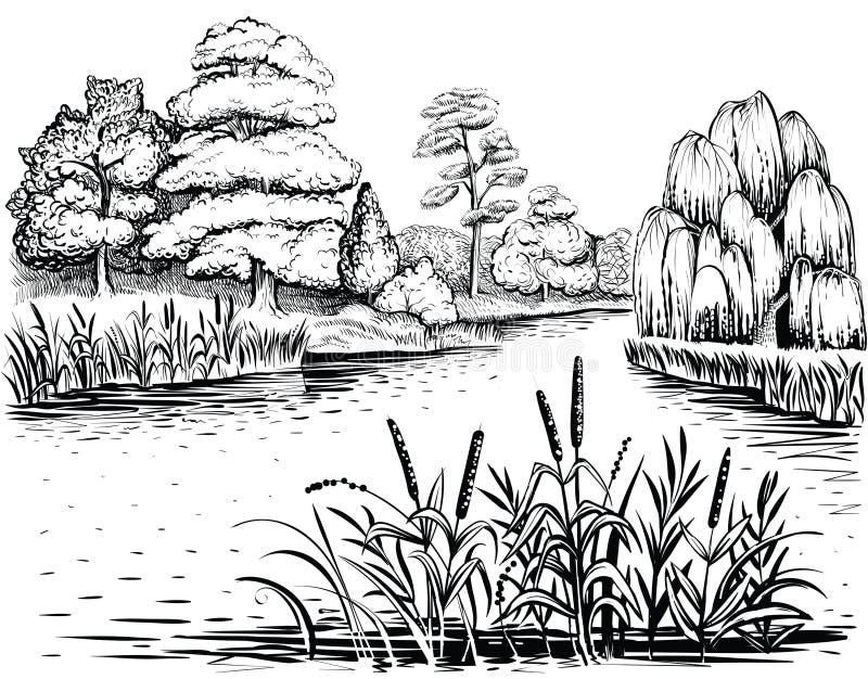 Rivier vectorlandschap met bomen en waterplanten, hand getrokken illustratie stock illustratie