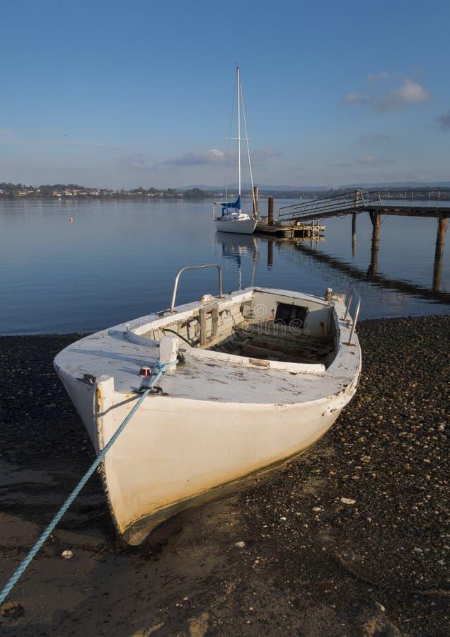Riviera di George Town con la barca e Tamar River immagine stock
