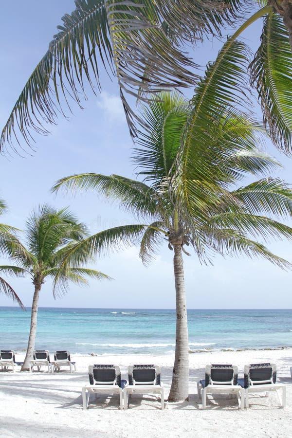 Download Riviera Maya Mexico Beach stock image. Image of chairs - 16990747