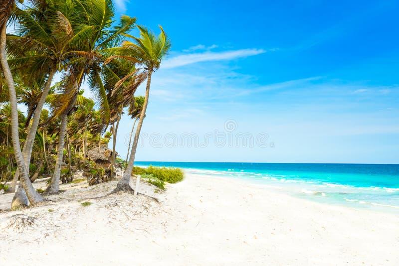 Riviera Maya - paradisstränder i Quintana Roo, Mexico - karibisk kust arkivfoton