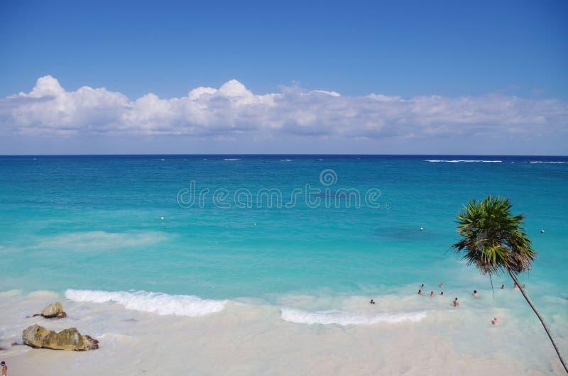 Riviera Maya royalty free stock photo