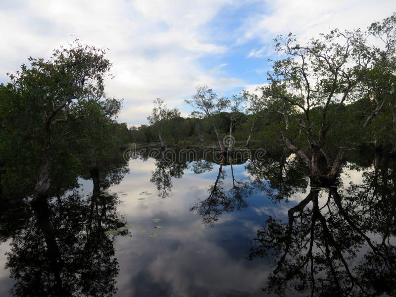 rivieren royalty-vrije stock foto