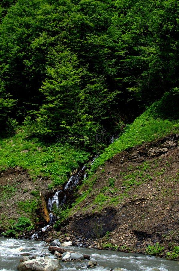Rivieren in bergen royalty-vrije stock afbeelding