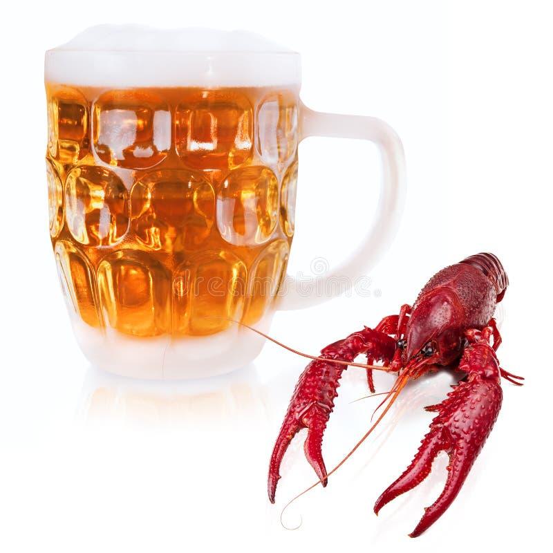 Rivierkreeften en bier stock foto's