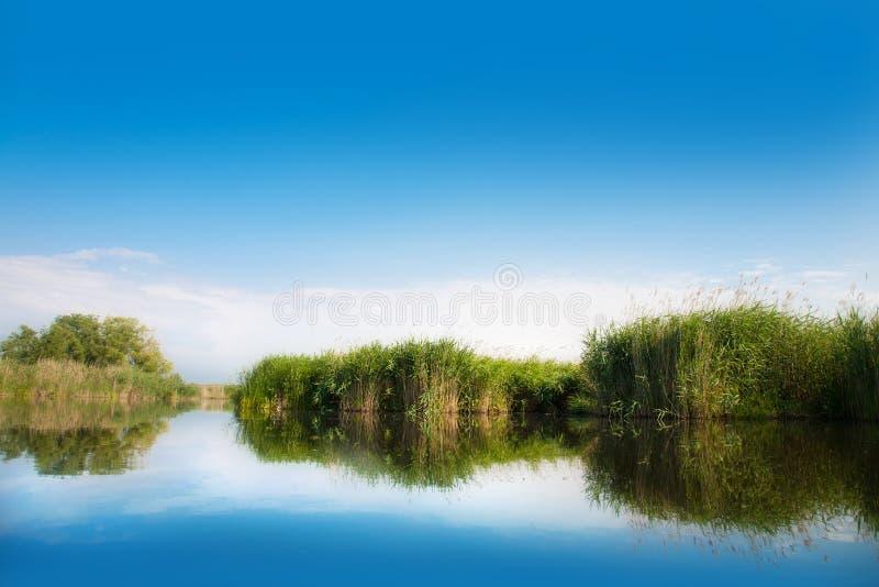 Rivierlandschap in de zomer zonnige dag stock foto