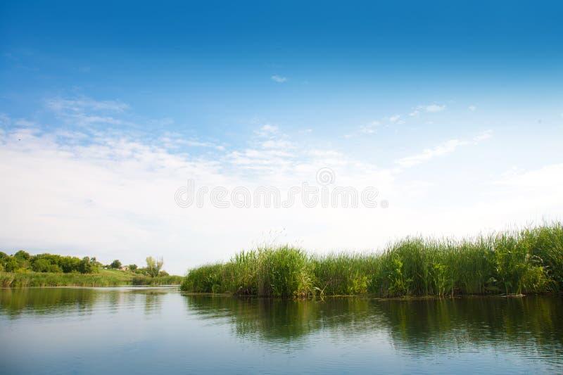 Rivierlandschap in de zomer zonnige dag stock fotografie